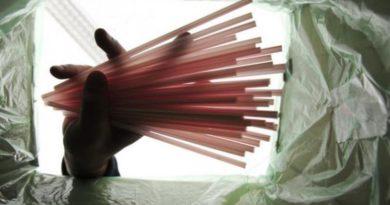 Aprovado projeto que bane uso de canudos de plástico em Santa Catarina