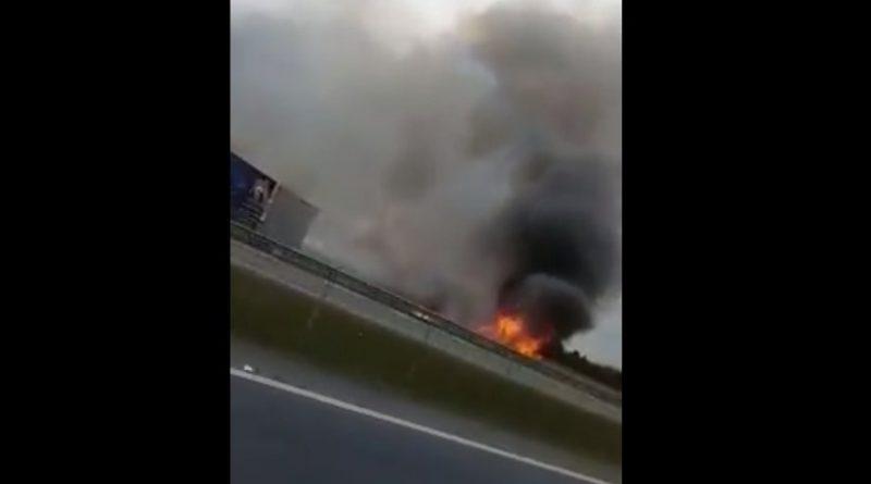 Queimada que provocou acidente com 8 mortes na BR-277 começou à tarde, dizem moradores